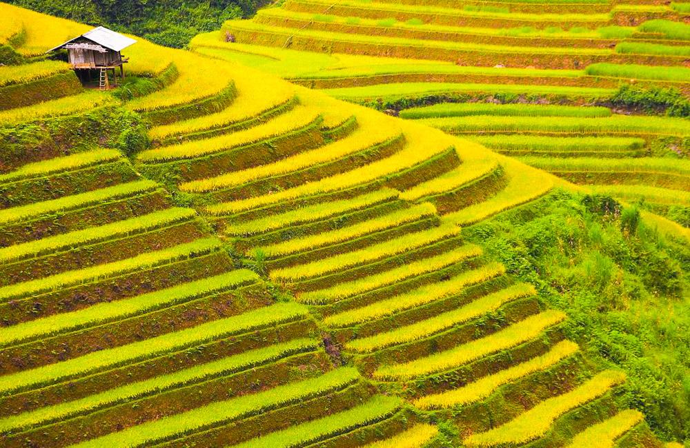 Pu Si Lung (3.076m) - top 10 ngọn núi cao nhất Việt Nam